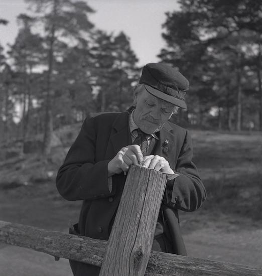 När våren kom, 1944. En äldre man skriver ner något, lutad mot en gärdsgårdsstör.
