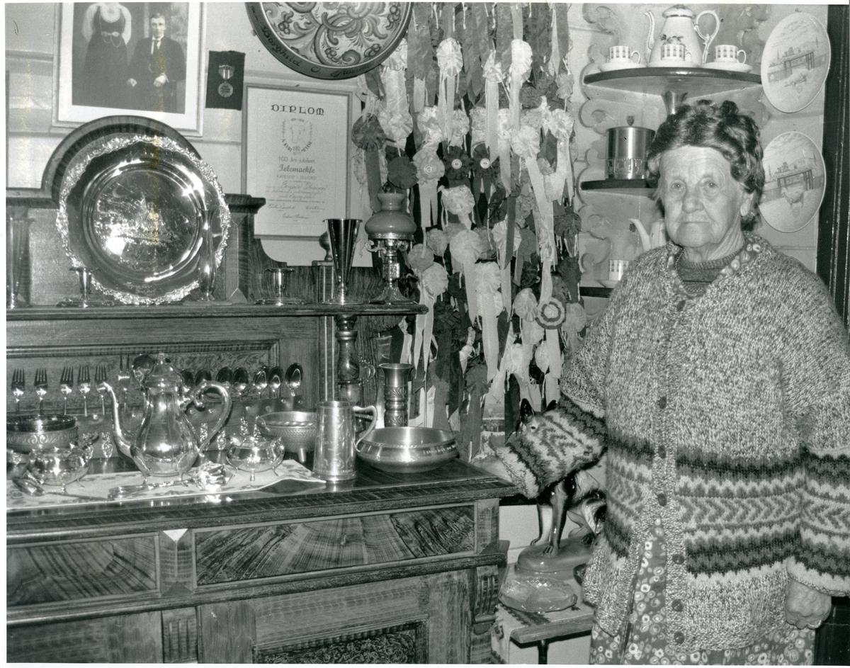 Borghild Glosimot framfor premiesamlinga