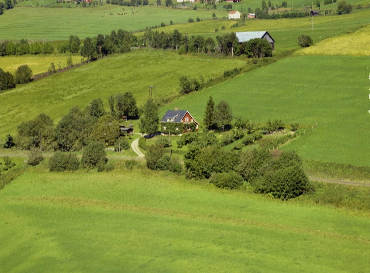 Bakkeli. Kulturlandskap. Bolighus, stor hage. Utkant av åkrer.