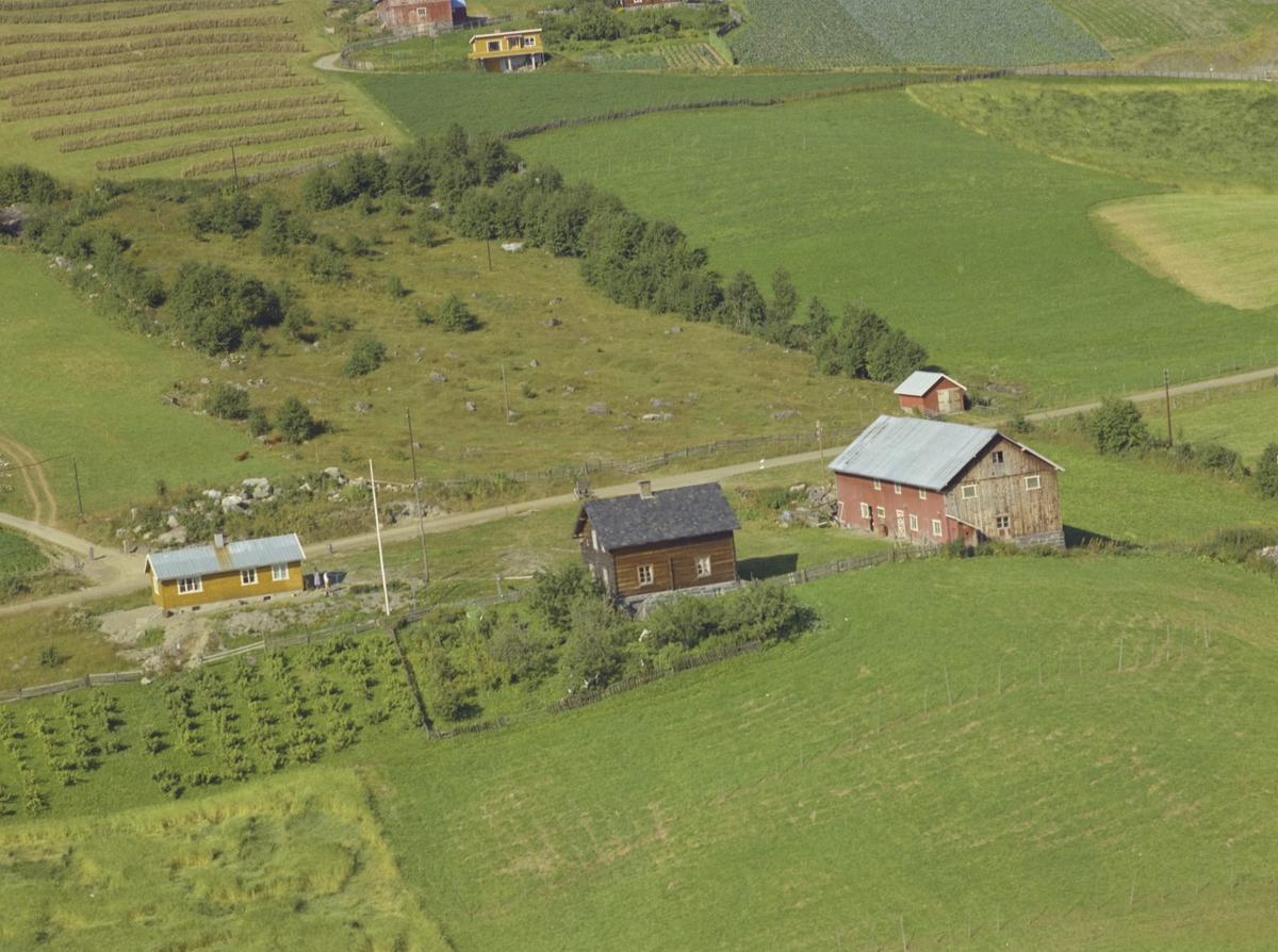 Småbruk, gult lite bolighus, fruktbusker, gul hytte i bakgrunnen, Haugan, Gausa, Østre Gausdal