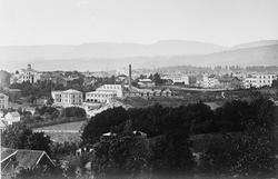 Utsikt fra St. Hanshaugen mot nordvest.