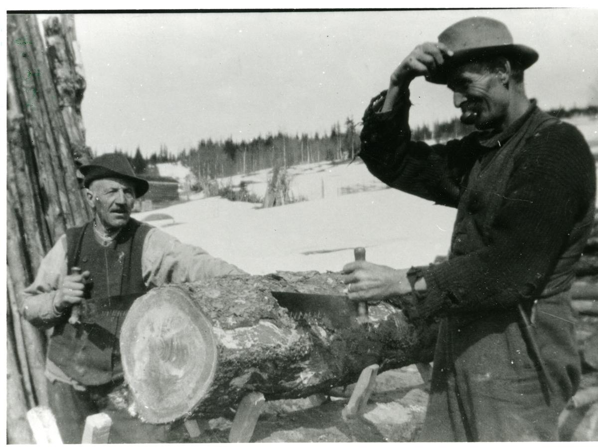 Syver Gjermundsplass og Ivar Sørlie.