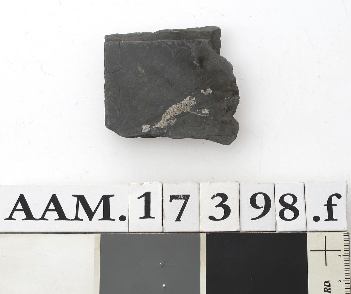 Skifertavle i fire deler .   a)  17,7 x 8. Femkantet hjørnestykke.   b)  15 x 6,3. Hjørnestykke med et hakk,  den lengste side er buet. A-b = G 1435.   c)  16,5 x 5,8. Smalt spisst bladformet. = G 1153.   d)   Lite skiferstykke. L. 4,8. B. 1,5