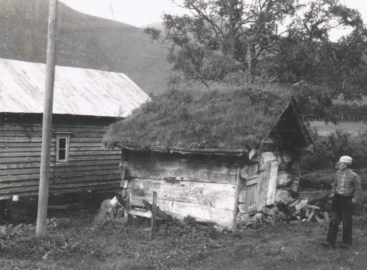 Dokumentasjonsbilder i serie av et lite, gammelt hus. Skal ha vært brukt av ei gammel kone.