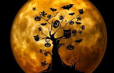 halloween-959048_960_720.jpg