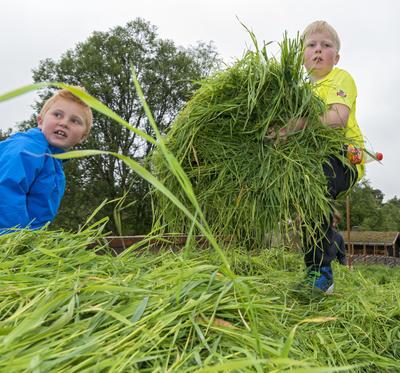 Slåttekarer på Dølmotunet (Foto/Photo)