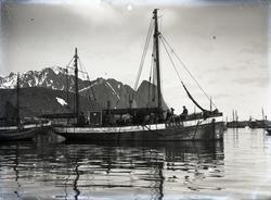 Fiskekutter m/s 'Odd' Reg. N34LN (b.1902, Norge)