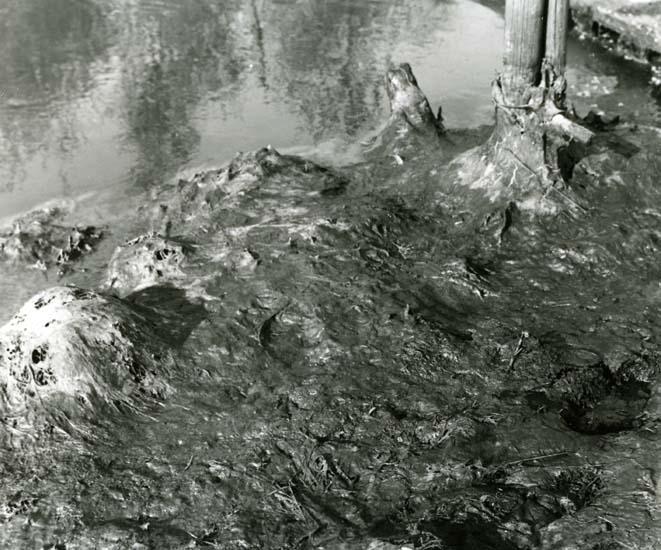 """Efter vårflödet finns fjolårsgräset under dess döljande lager av en obeskrivlig """"kladdvälling"""" kilometer efter kilometer."""