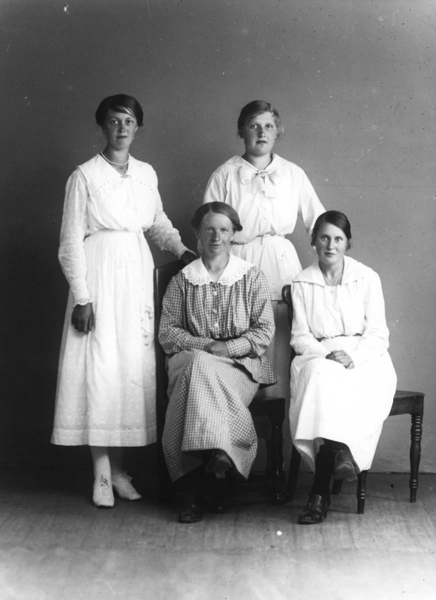 Stina Carlsson från Barnarp med okända kvinnor.