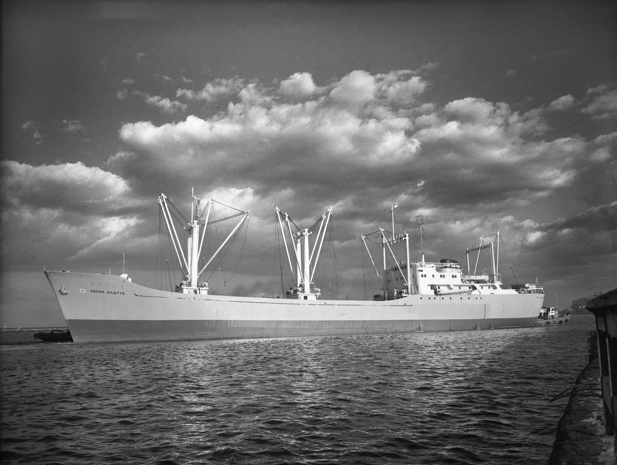 M/S HÖEGH AILETTE. Fotot taget den 26.5.1960.