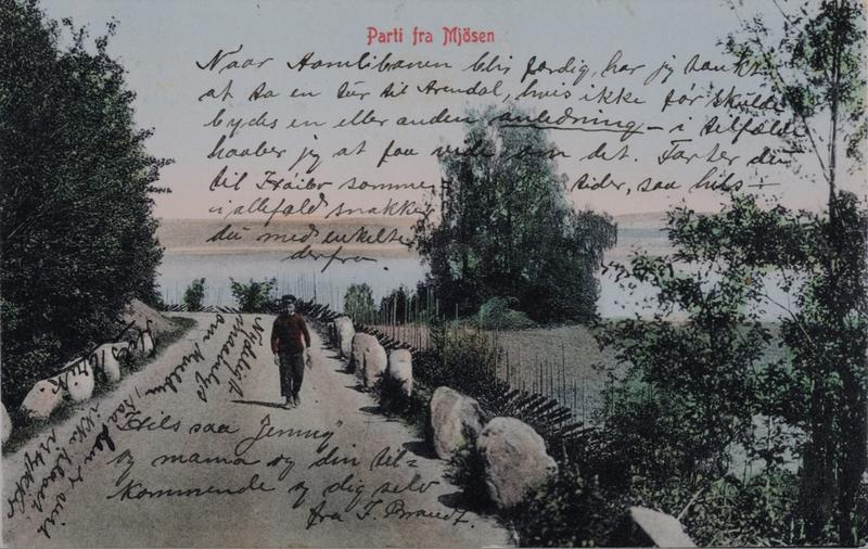 Parti fra Mjøsen - postkort