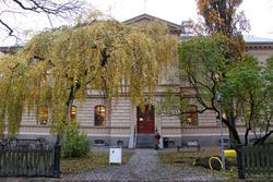 Arkeologisk schaktningsövervakning, Regnellianum, Fågelsånge