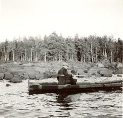 264.P.ag. Foto:J.Granlund 1936 Aborrnätet lägges ut.