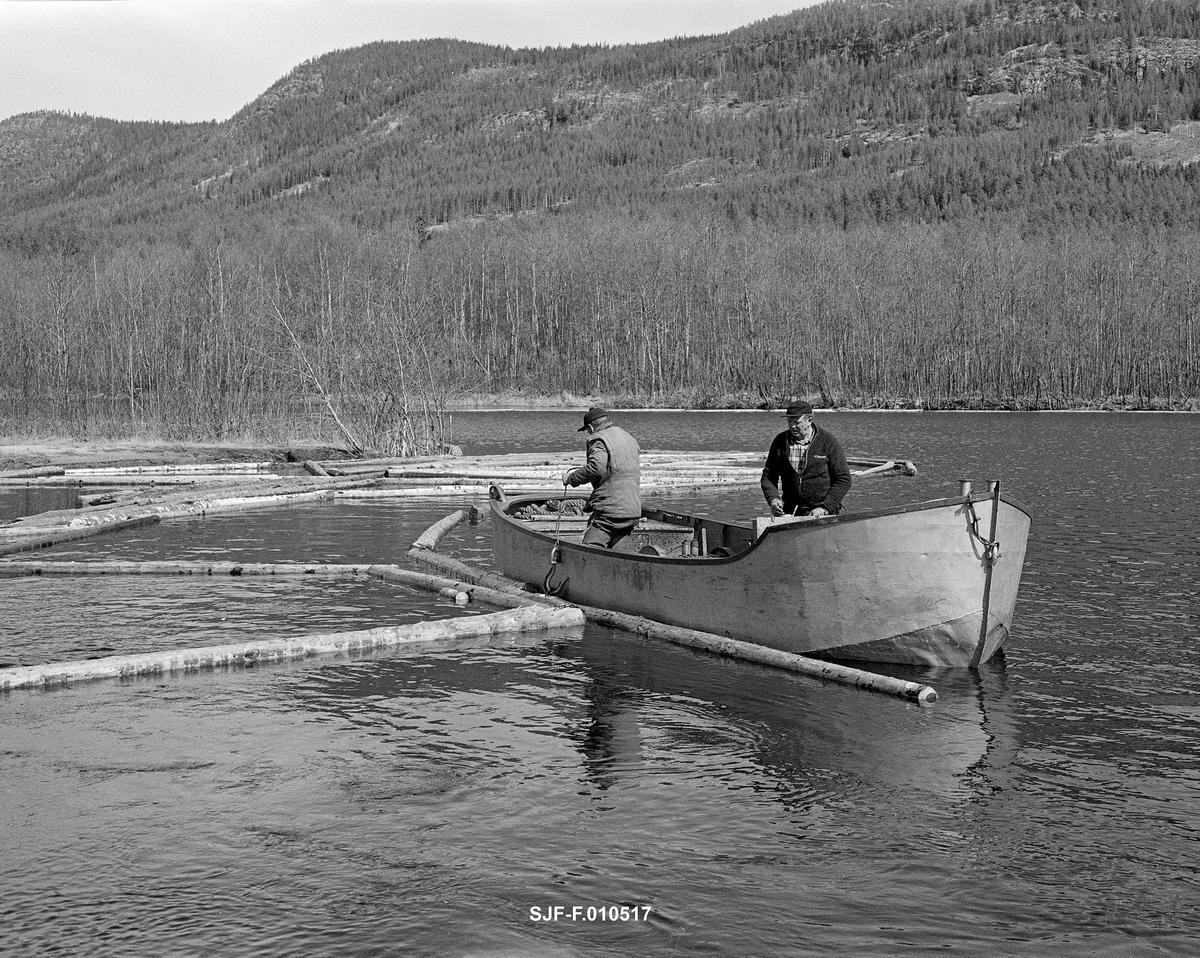 Arbeid med ringbom, antakelig i nordenden av Lomnessjøen i Ytre Rendalen, våren 1984.  Dette var det siste året det ble fløtet tømmer i denne delen av Glommavassdraget.  På dette fotografiet ser vi fløterne Ola Stubsveen (1924-1998) og Harald Hansen (1926-1999) i arbeid i en varpebåt.  Dette var et åpent stålfartøy med innvendig motor og vinsj med slepeline, som ble brukt når tømmeret skulle trekkes i ringbommer fra Hornsetlensa i nordenden av innsjøen til Kvernnesodden i sørenden.