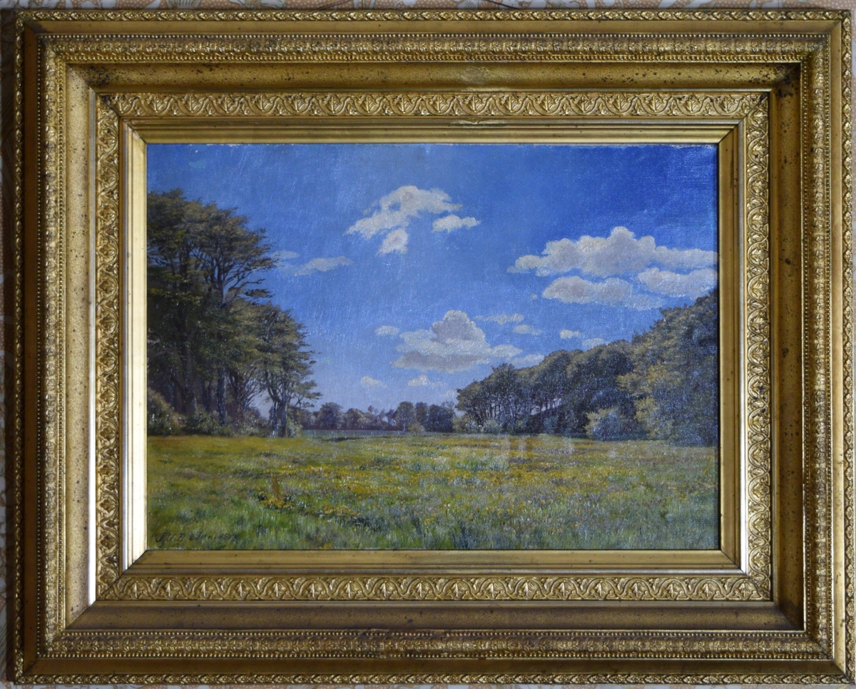 Eng eller myr med trær på begge sider og i bakgrunnen. Blå himmel med hvite skyer.