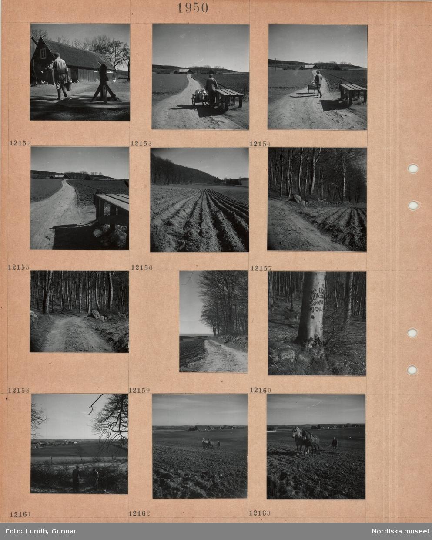 Motiv: Gårdsplan med brunnsvev, en man går med en vattenhink, höns, en man står vid en mjölkpall med kärra med stora mjölkkärl, smal grusväg, åkrar, bondgård, nyplöjd åker nedanför bokskog, grusväg, grov trädstam med inristningar, kulturlandskap med by, en man arbetar med jordbruksredskap draget av två hästar på åker.