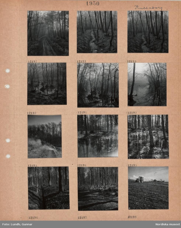 Motiv: Kullaberg, lerig skogsväg, rinnande bäck i skog, översvämmad skogsmark, eldning vid åkerkant, grävt dike i bokskog, avverkade trädstammar vid skogsväg, traktor på åker.