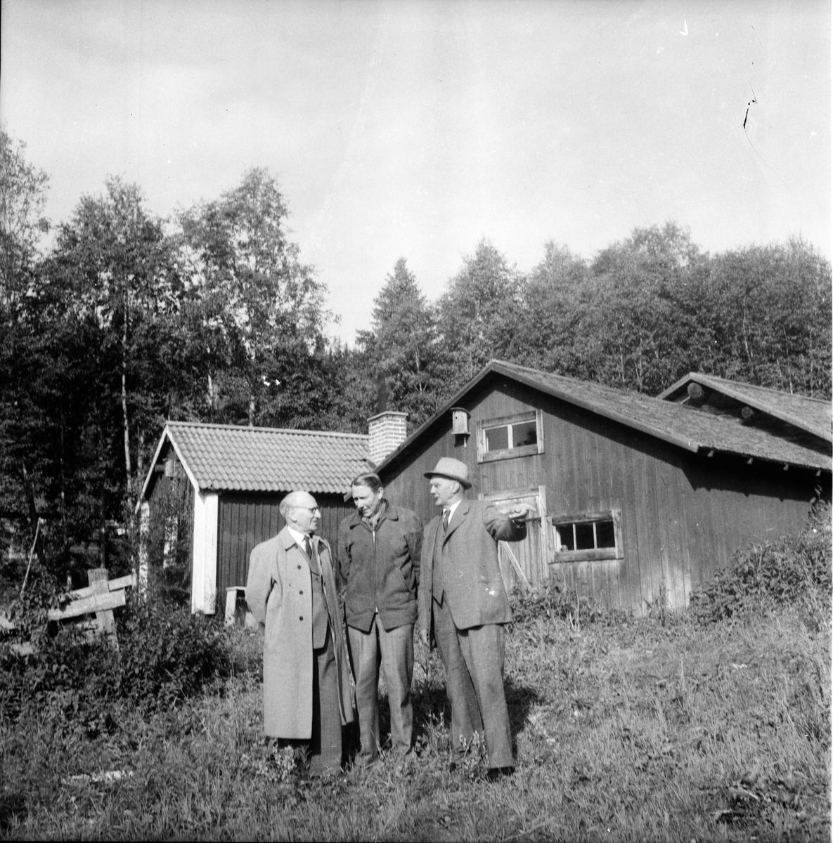 Fäbodvallar inventeras. Landshövding Lingman m.fl. 17/6 1956