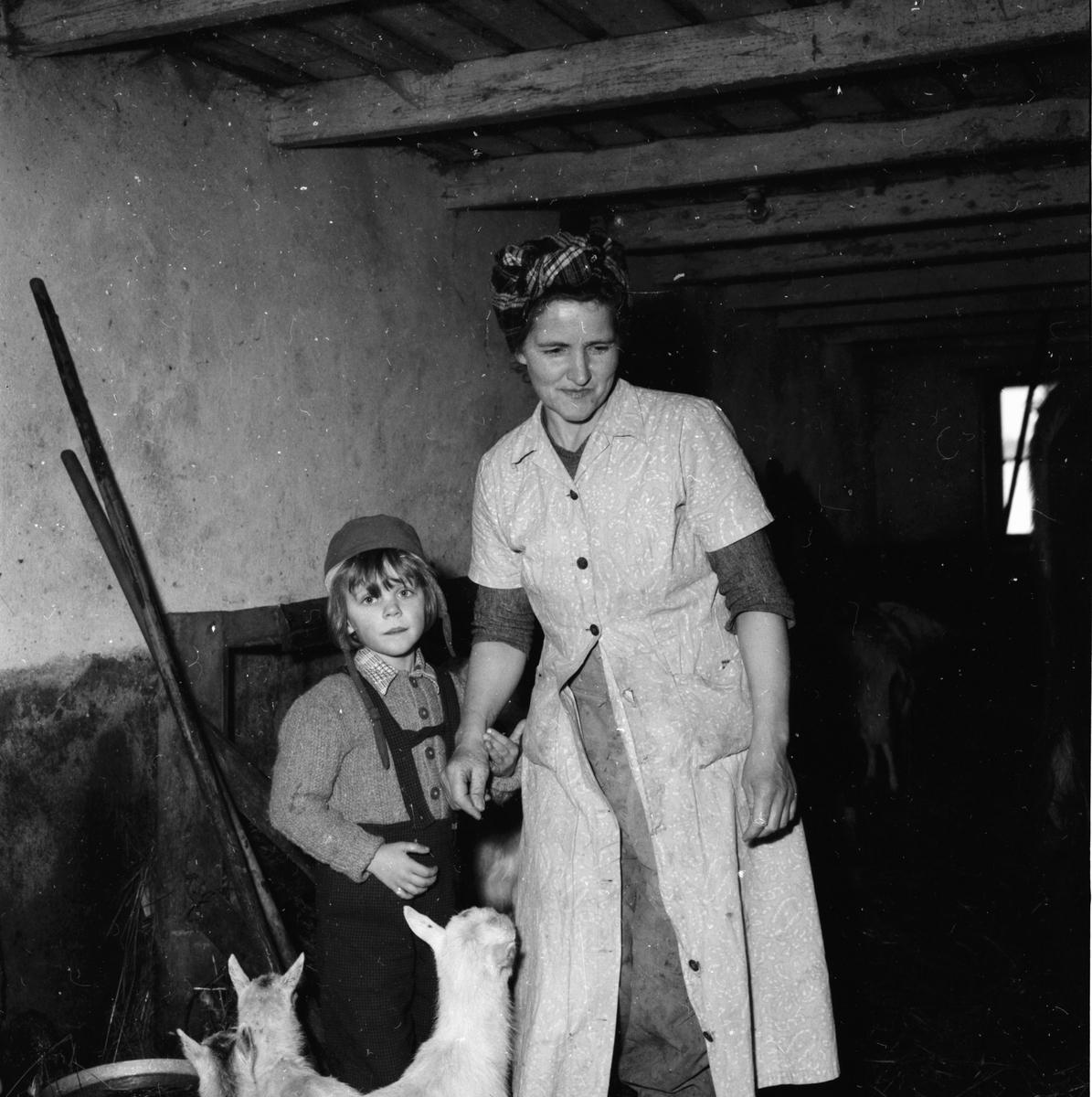 Kvinnlig jordbrukare. Växbo 10/3 1958