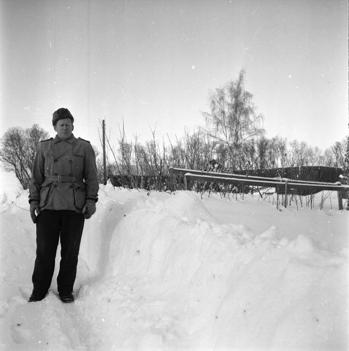 Trädgårdsmästare Gösta Hedlund Januari 1956