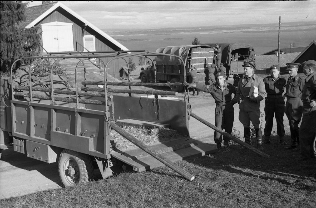 Lastebil for transport av hest ved Hærens Hesteskole på Starum, september/oktober 1948. Personene fra høyre: Sersjant Markeng, kaptein Norli, ukjent, trolig major Bjart Ording (plasskomandant), ukjent.
