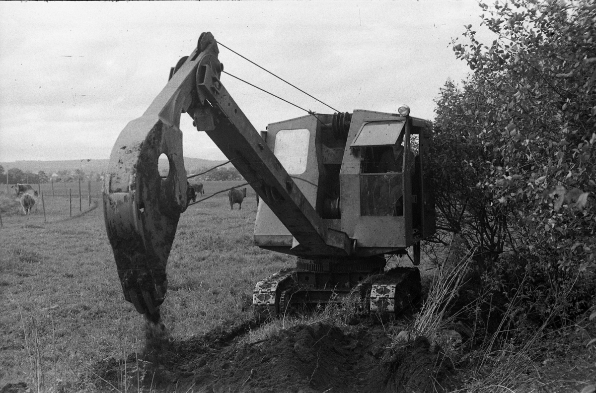 Gravemaskin, ettersommeren 1950.