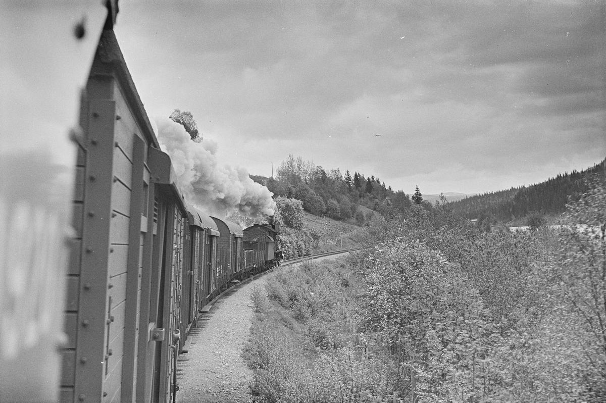 Underveisgodstog fra Trondheim til Hamar, tog 5712. Toget trekkes av damplokomotiv type 30b nr. 350.