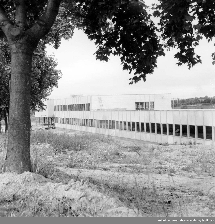 Stormbull. Esteriør. September 1959
