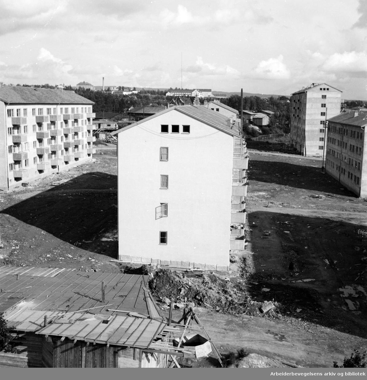 Storo. August 1948