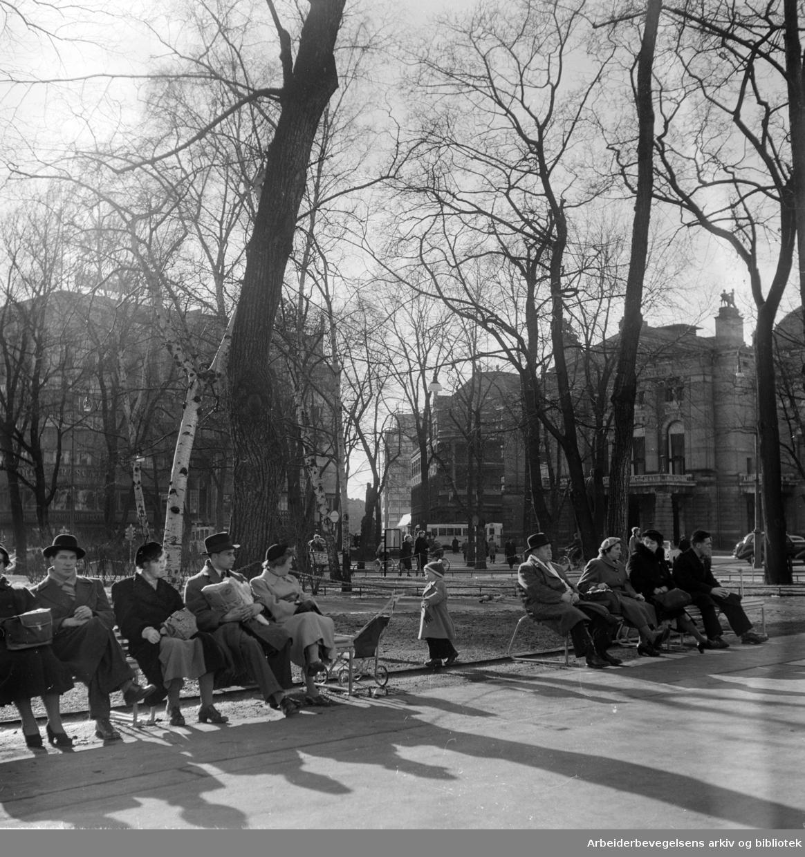 Studenterlunden. Mars 1955