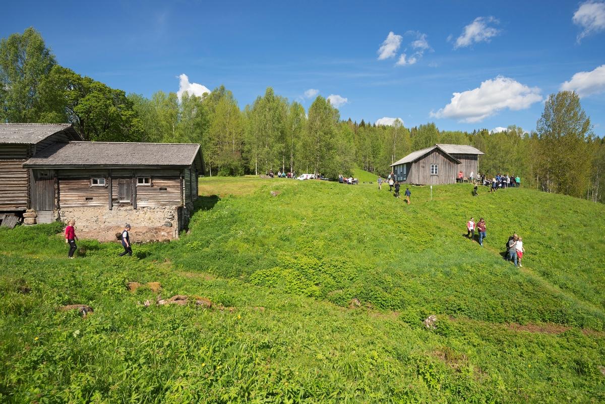 Skoleelever på Oppistun Børli, arrangement i regi av Kongsvinger Museum. Oppistun Børli er en husmannsplass i Eidskog kommune, Hedmark. Den er kjent som et kunstnerhjem ettersom forfatteren Hans Børli (1918–1989) ble født og vokste opp her. Stedet ble ryddet av skogfinner tidlig på 1700-tallet. Børli-familien ble knyttet til stedet da Hans Børlis oldefar bosatte seg her i 1860. Hans Børli bodde i barndomshjemmet fram til 1946. Arrangement. Publikumsarrangement.
