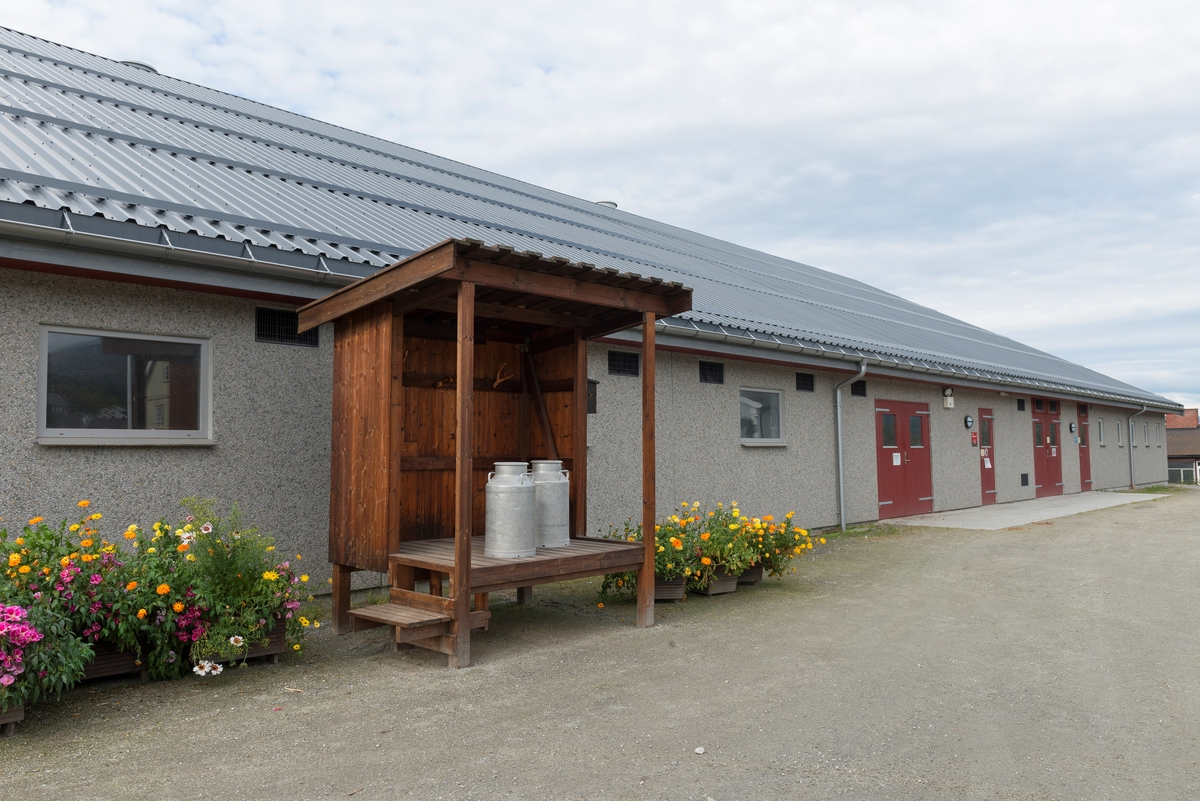 Fra Storsteigen videregående skole i Alvdal, Hedmark. Driftsbygning. Undervisning. Utdanning. Husdyrbruk i Nord-Østerdalen. Landbruk. Storsteigen videregående skole har undervist i landbruk og naturbruk i mer enn 100 år.