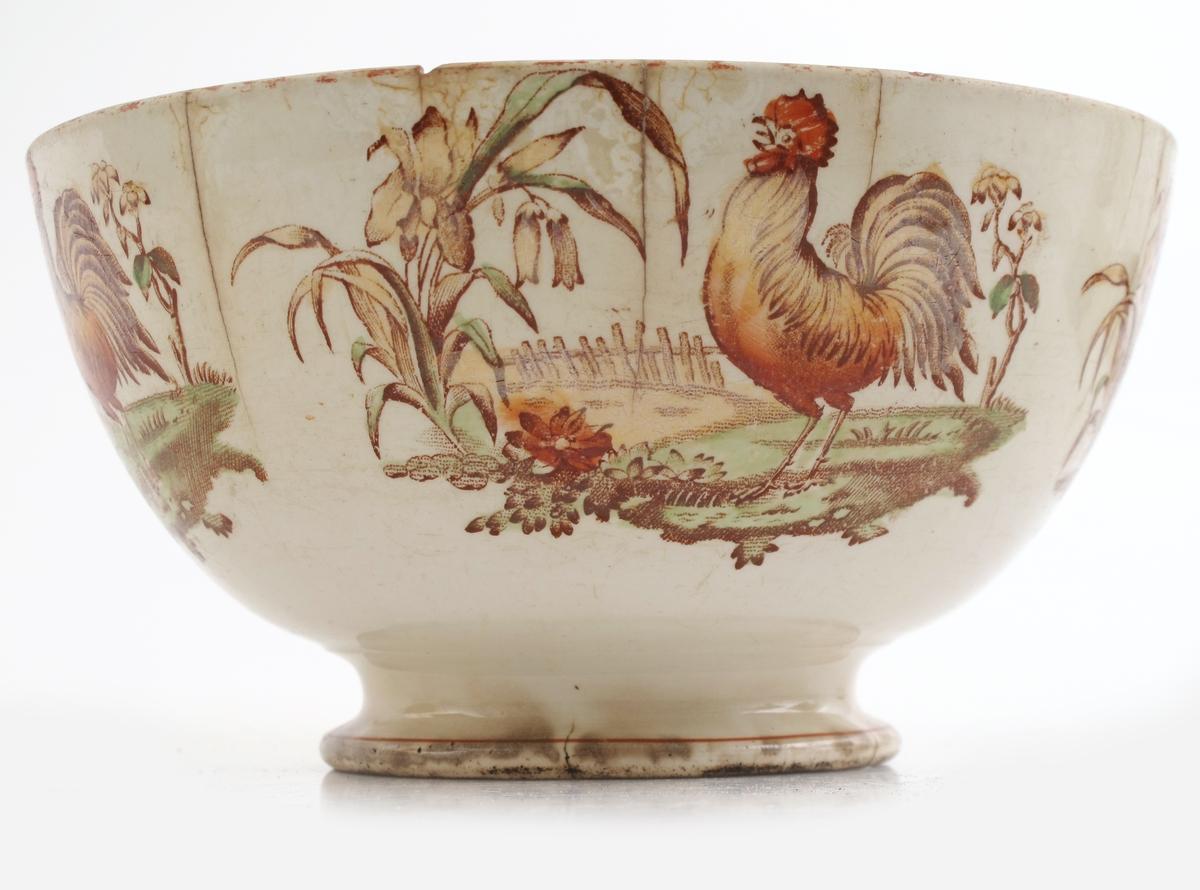 Haan (hane)./ hane og lilje.