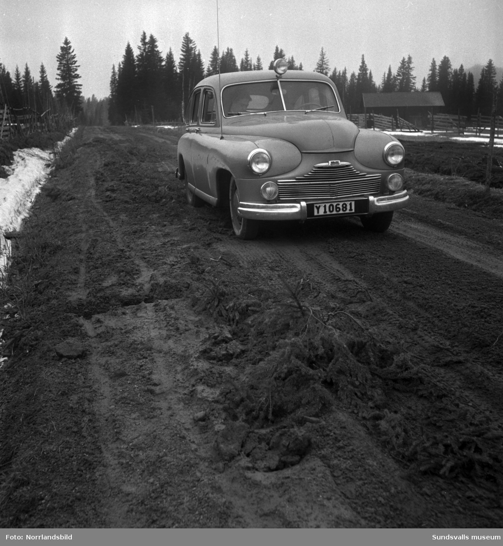 Besvärligt och lerigt väglag våren 1950 för bilförare och cyklister på vägen mellan Torpshammar och Hassela.
