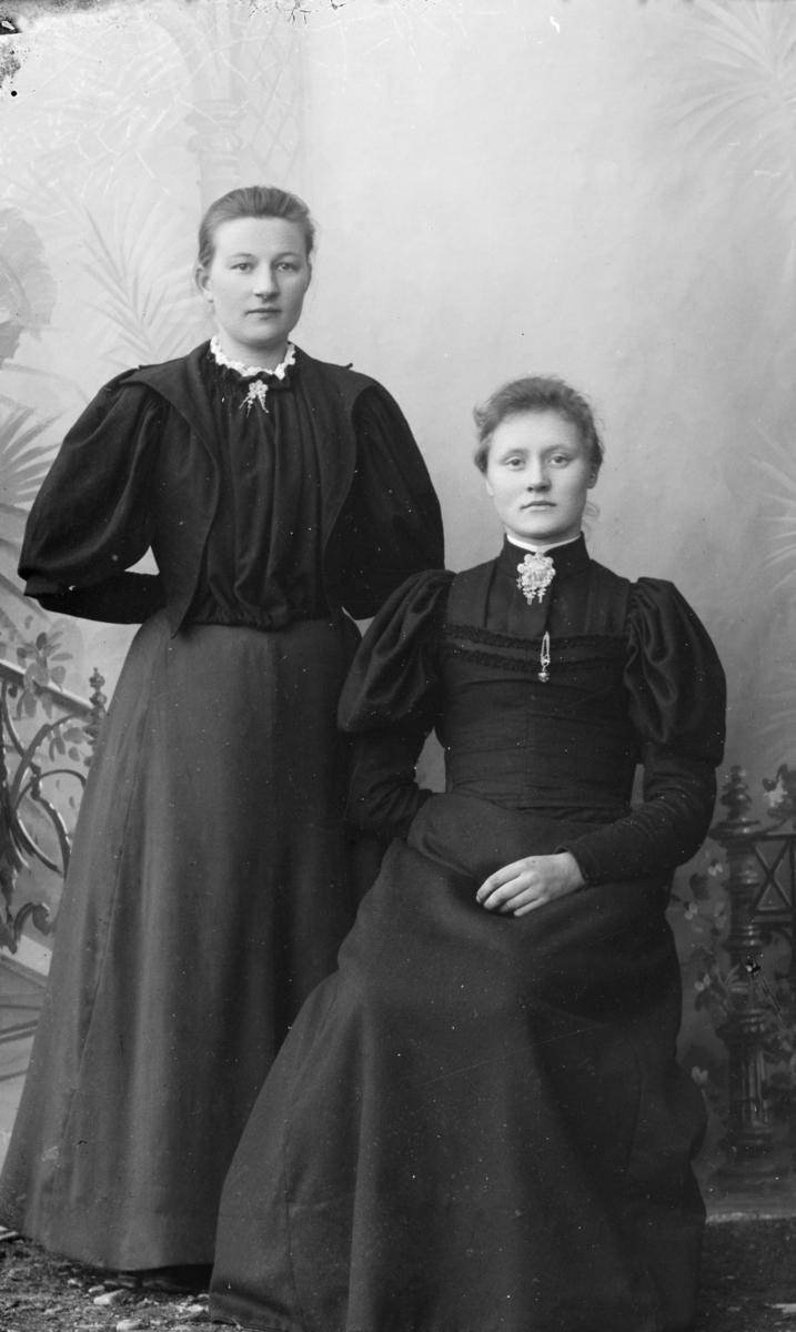 Portrett av Anna Svelle, stående og Maria Tofte, sittende