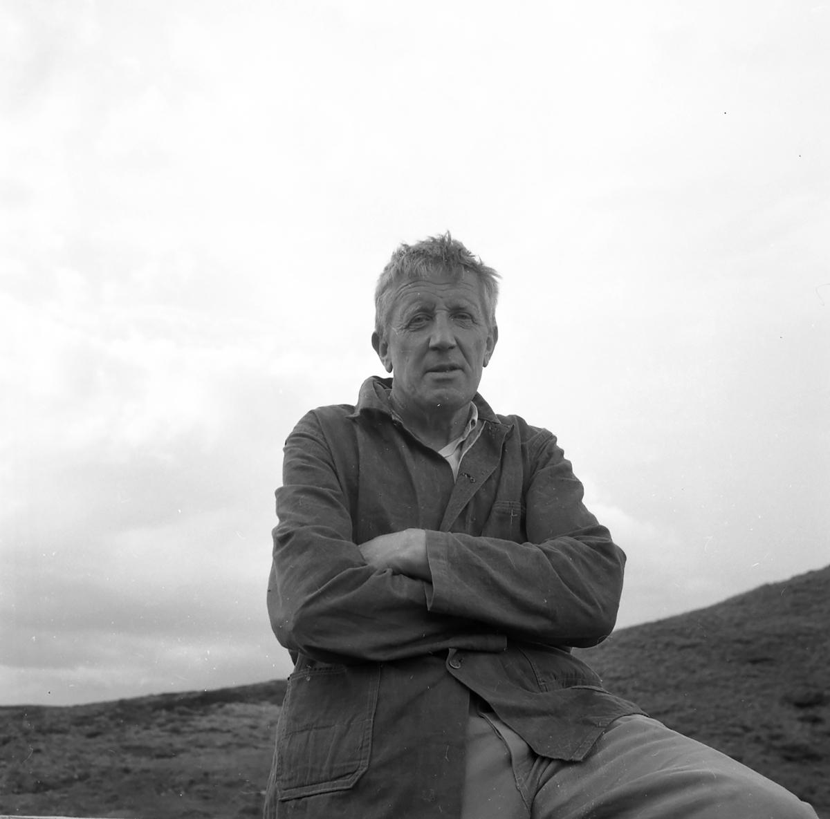 Fra hesteslepp på Bekkelegeret i Folldalsfjellene,Oppdal 1960