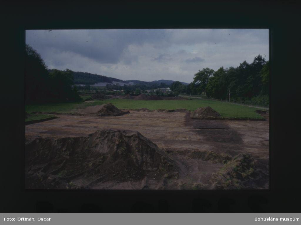 Norum 159 Norra delen av område A efter avbaning den förhistoriska vägen, A 172, framträder Fotograferat från nordost