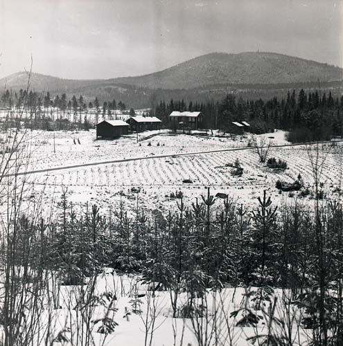 Vy mot Broddböle kronoboställe, från bergssluttningen sydost om gården. Skogsplanteringen börjar synas nu. Höle klack i bakgrunden. Fotograferat från Klackberget, april 1964.