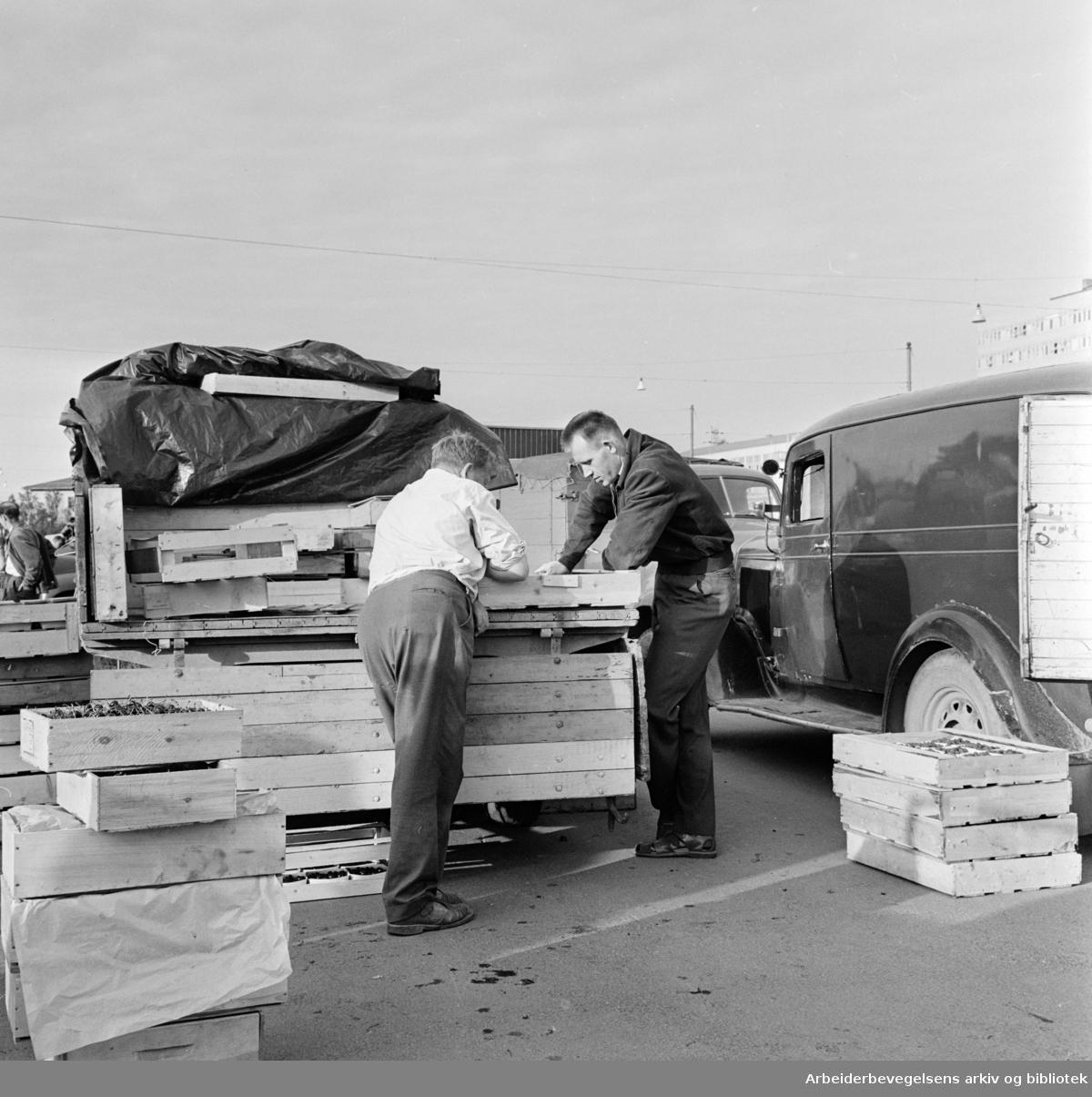 Økern torg. Juli 1961