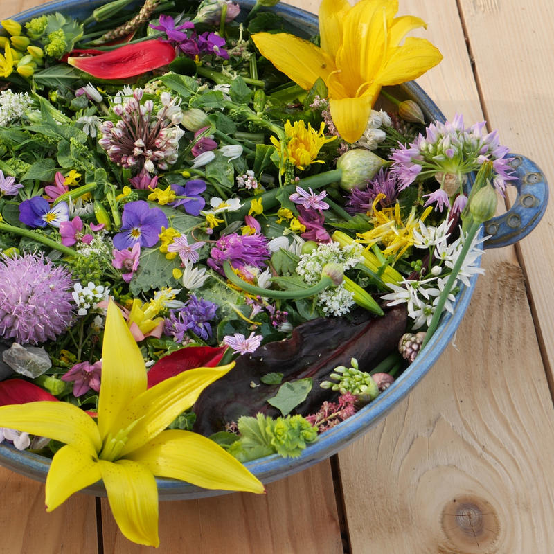 Salad19_Adressa_P1030494_liten.jpg