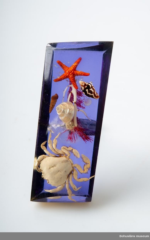 Handtag av plast med ingjutna skaldjur mot blå botten. Inköpt vid turistresa 1968 av givaren.