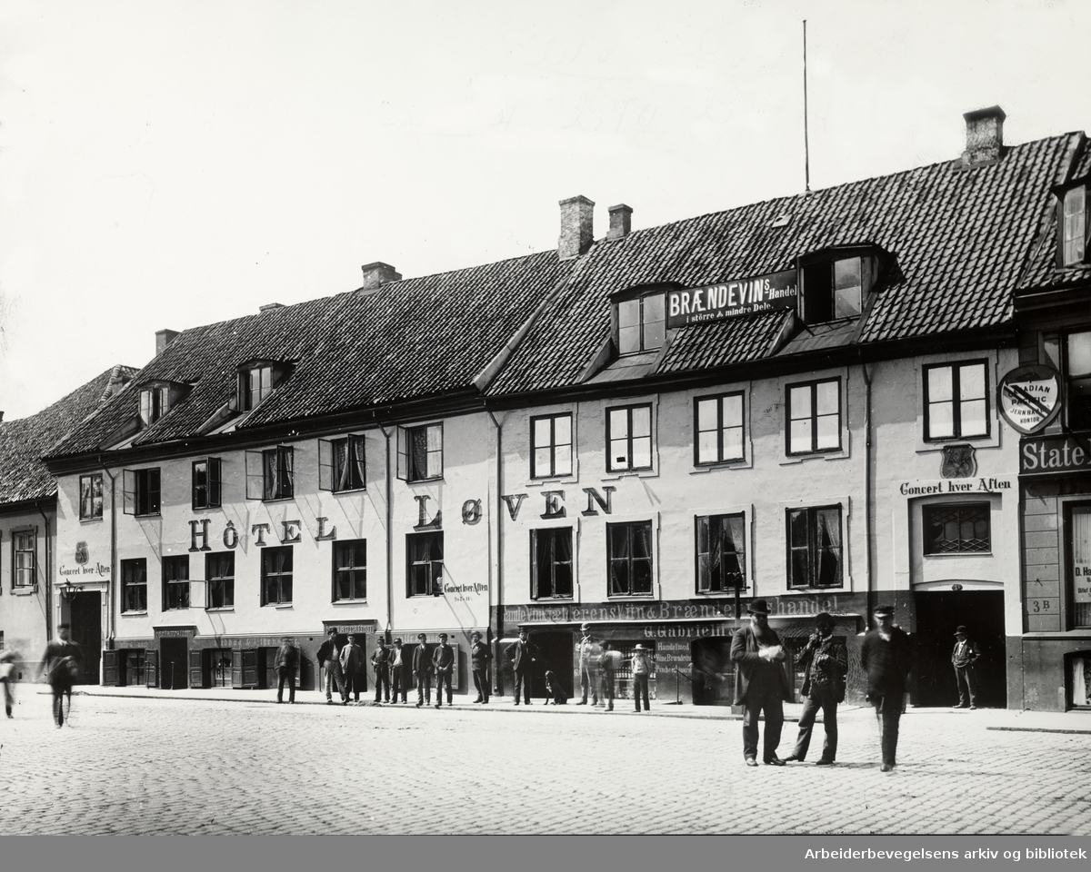 Hotel Løven og Vin- og Brennevinshandel. Ca.1880