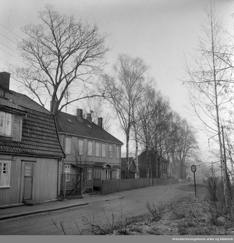 Odalsgata. Desember 1957