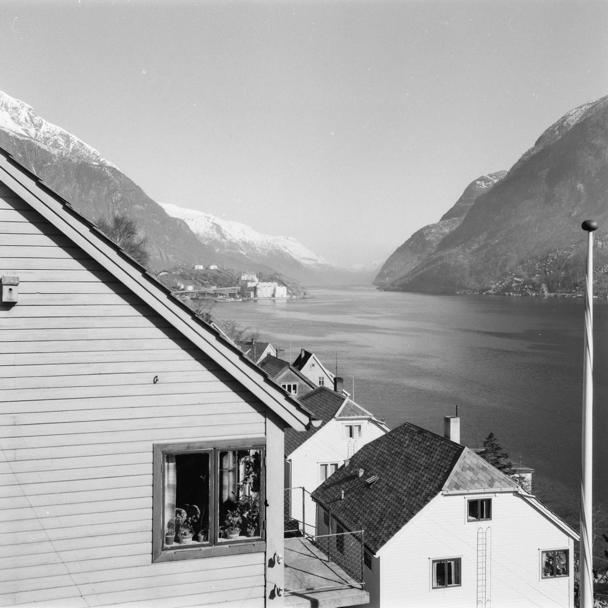 Kalvanes, bustadhus, Sørfjorden, Eitrheimsneset med Norzink, fabrikk, snødekte fjell, flaggstong