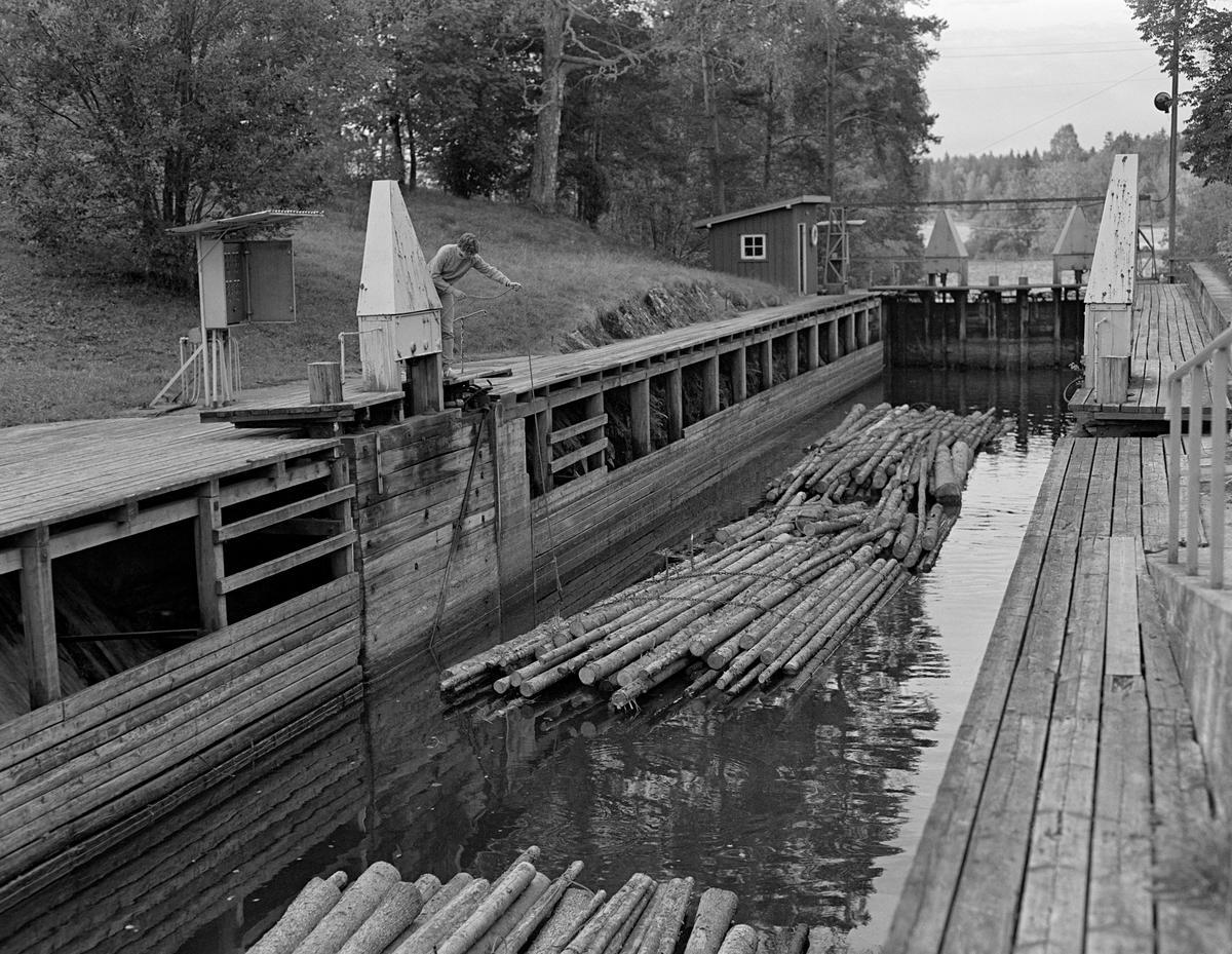 Tømmer på veg inn i det ene slusekammeret ved Strømsfoss sluse i Aremark i Østfold.  Fotografiet er tatt i 1982, som var den siste fløtingssesongen i Haldenvassdraget.  Øvre sluseport sto åpen, og ei slusevending – i dette tilfellet fire bunter med ubarket massevirke i tre meters lengder – var i ferd med å sige inn i slusekammeret.  Anne Johansen sto ved sluseporten med armen strukket ut mot slusekammeret.  Hun holdt et tau med en endekrok, som hun forsøkte å hekte på et av vaierbindene på den bakerste tømmerbunten.  Dette tauet skulle etter hvert knyttes fast på arbeidsplattformen Anne sto på, slik at det hindret slusevendinga i å sige for langt fram mot den fremre porten.  Når den skulle åpnes, slik at tømmeret kunne føres videre, slo nemlig portene inn i slusekammeret, og da var det viktig at tømmeret ikke stengte.  Ved Strømsfoss sluse var åpning og lukking av sluseporter og luker mekanisert.  Bryterpanelet som aktiverte og deaktiverte de hydrauliske mekanismene satt i skapet til venstre i bildet.  Strømsfoss sluse utliknet en høydeforskjell på to meter mellom den ovenforliggende Strømselva og den nedenforliggende kanalen mot Aremarksjøen.  En liten historikk om tømmerfløting og kanaliseringsarbeid i Haldenvassdraget finnes under fanen «Opplysninger».