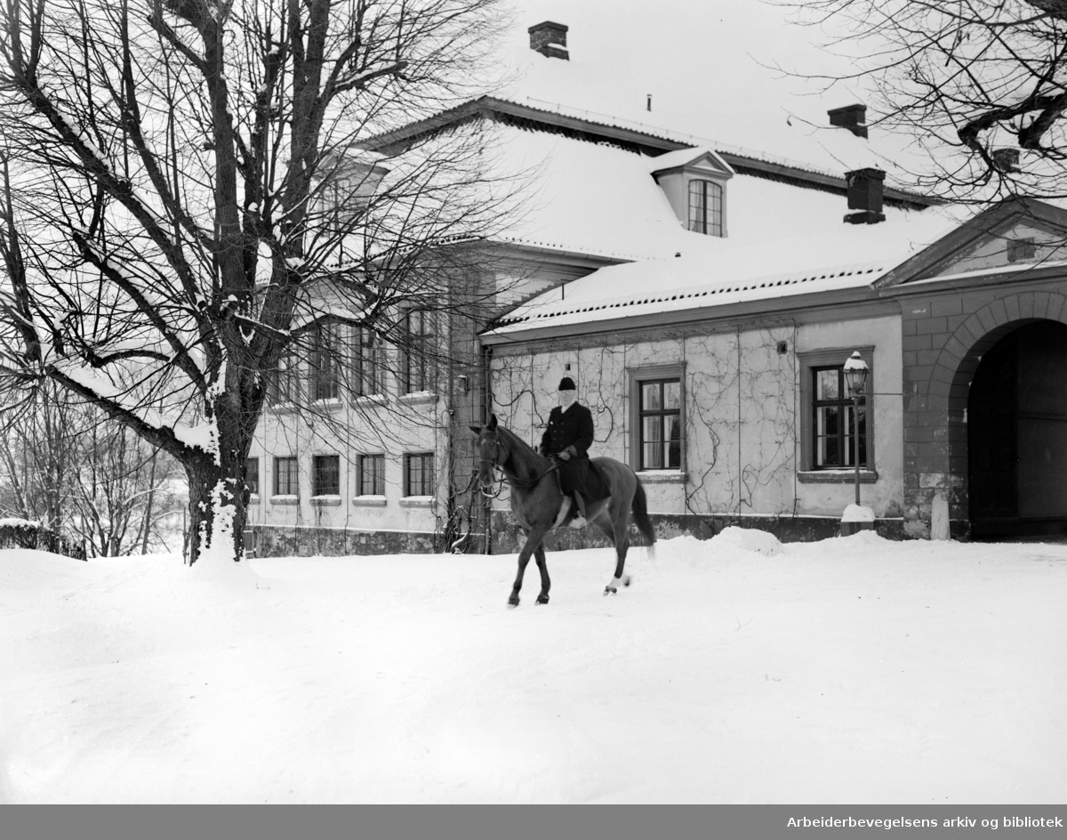 Bogstad gård. November 1954