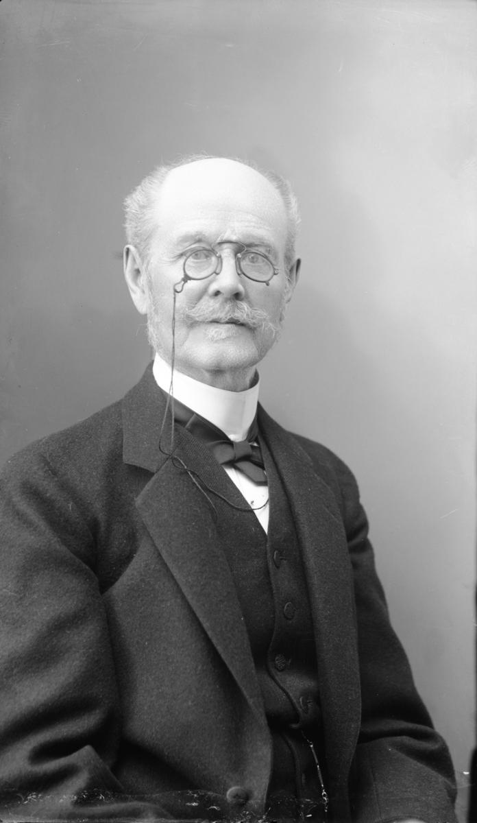 Domare, riksdagsman och häradshövding Oscar Ludvig Maximilian Schenström
