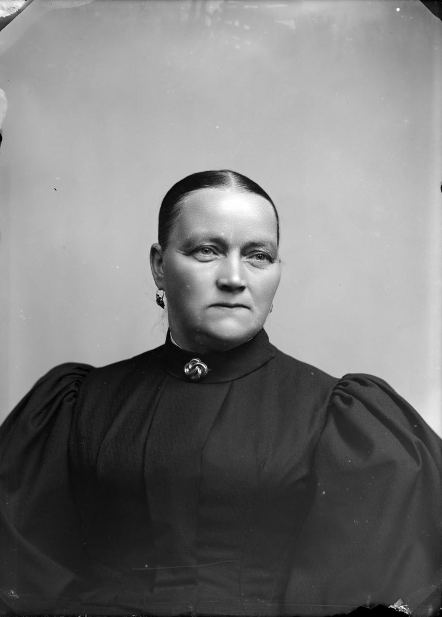 Portrett av kvinne i mørk kjole .