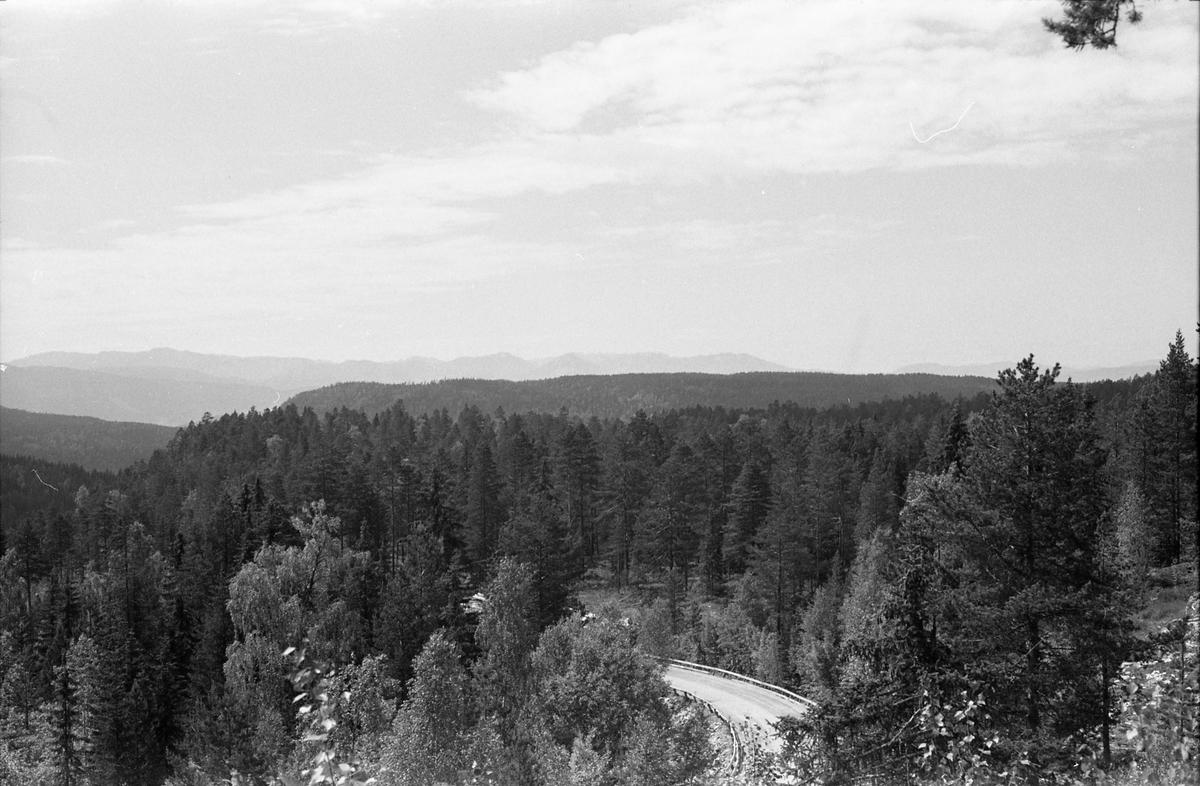 På plass på Meheia for å se på total solformørkelse 30.juni 1954. Utsiktsbilde fra standplassen.