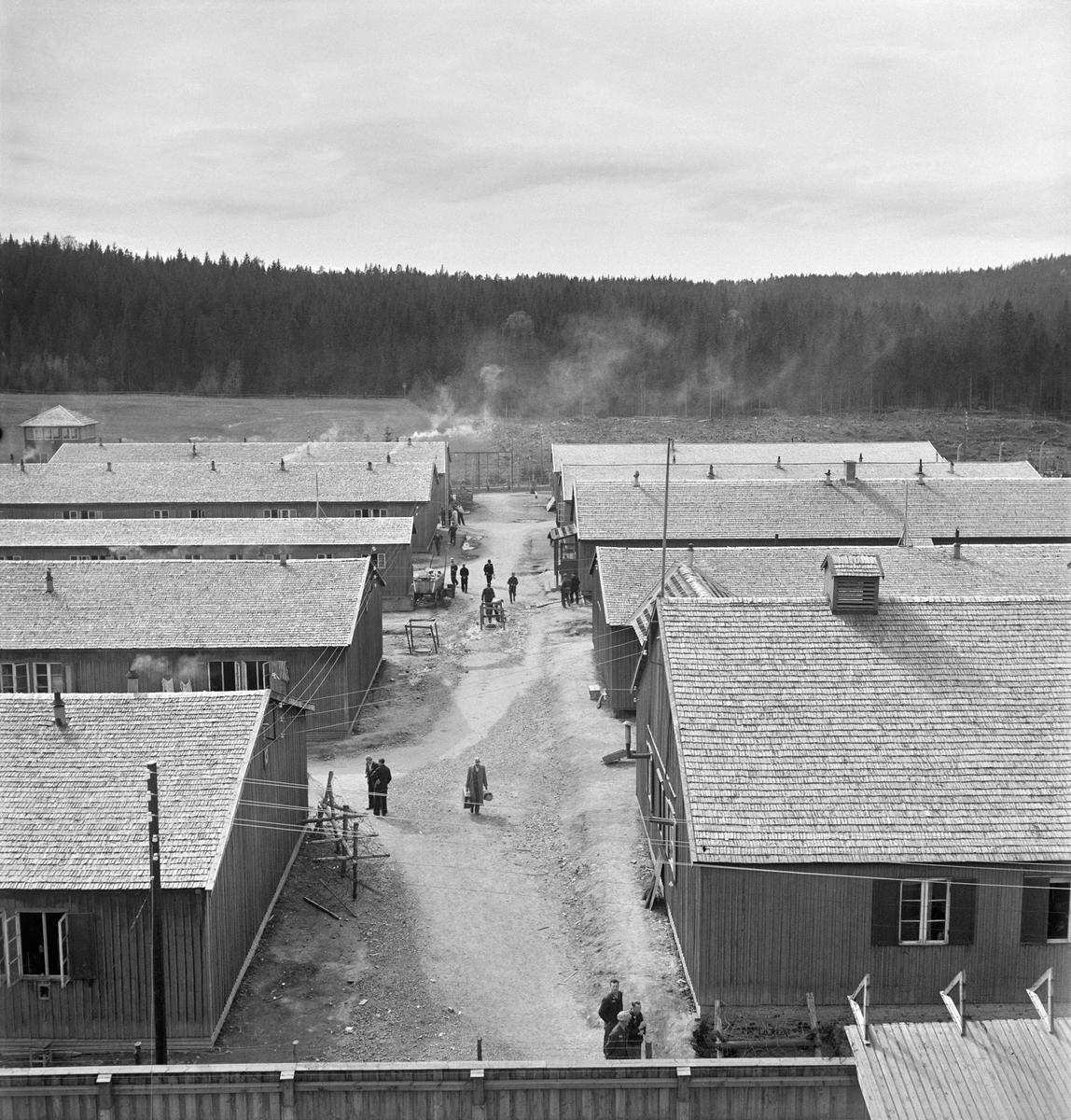 Grini fangeleir, 1945